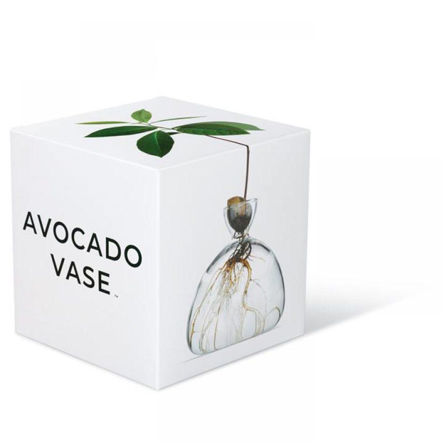 Avo-Vase-Box1-Ilex-Studio_720x